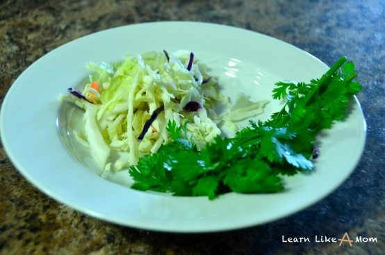cabbage and cilantro for fish tacos