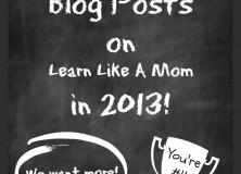 Top Blog Posts in 2013